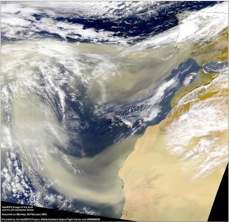 Saharan Dust, Image Credit: NASA
