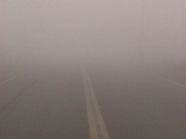 Dense Fog, Image: NOAA