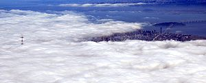 Advection Fog From Above
